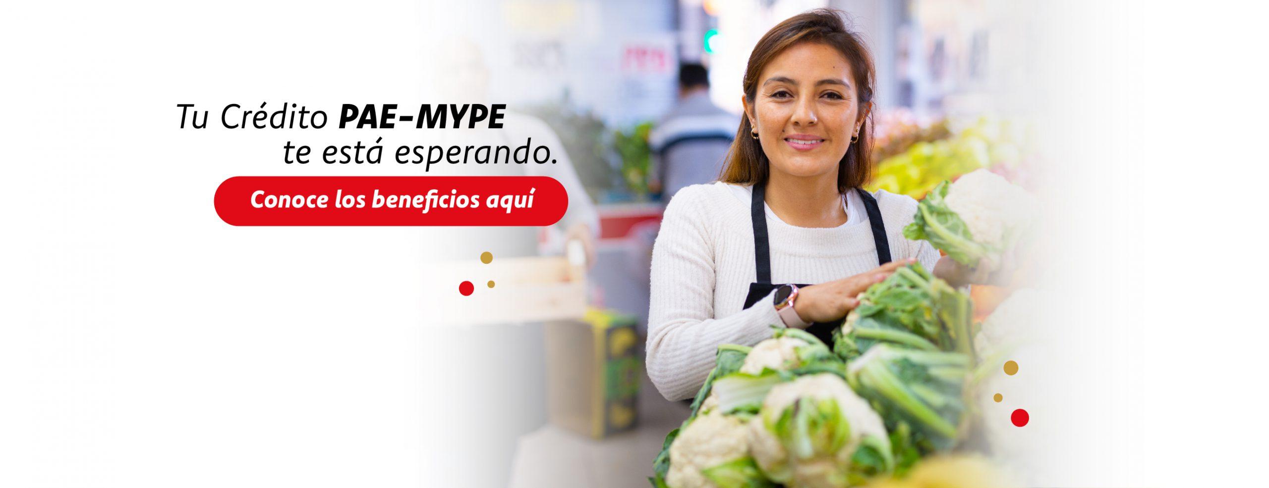 pae mype__1